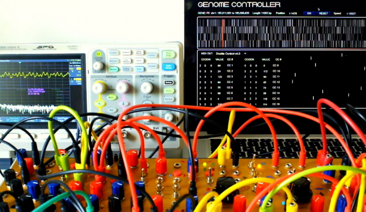 From Jumping To DNA - More Ways To Control Synths