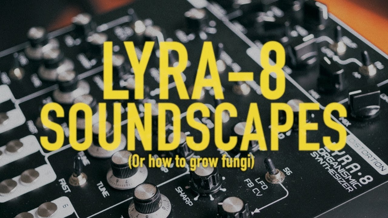 Embedded thumbnail for Lyra-8 > YouTube